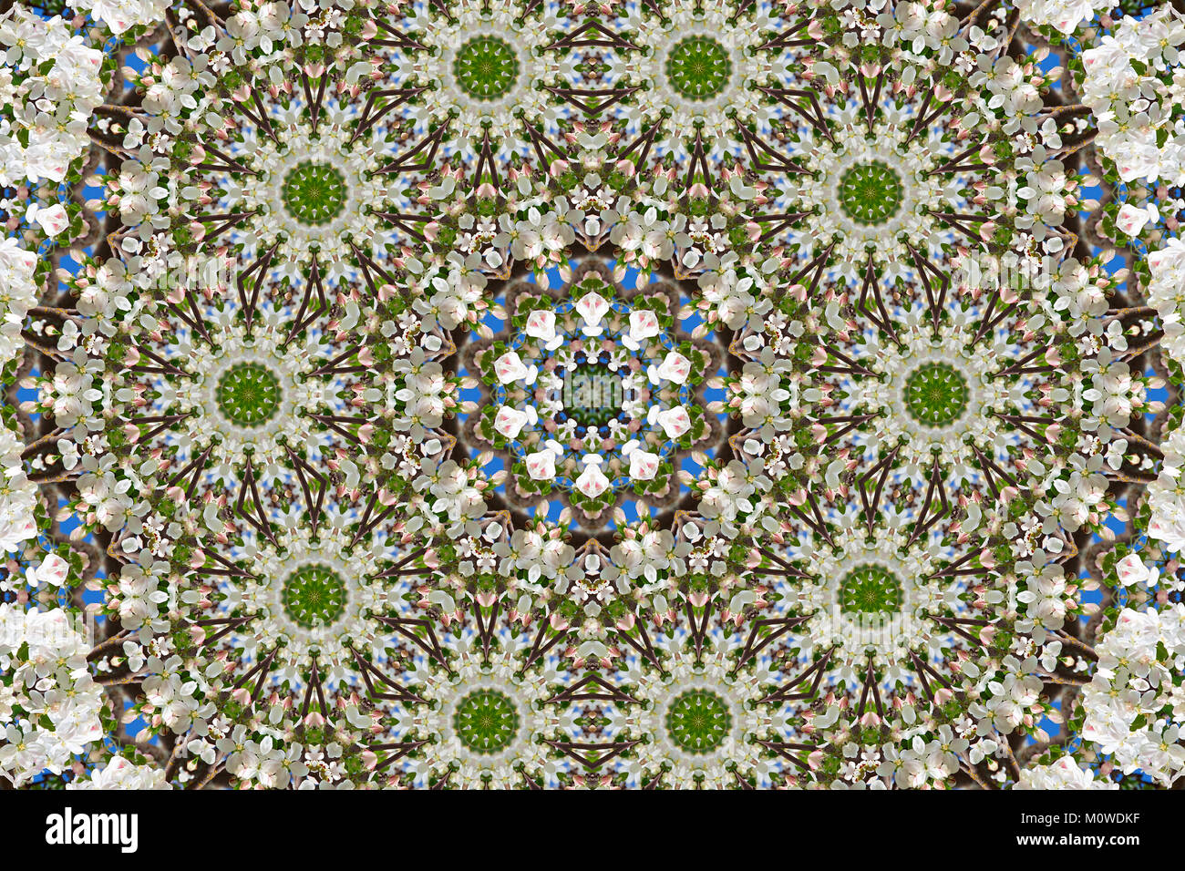 abstract background of floral pattern of a kaleidoscope. white blue green background fractal mandala. abstract kaleidoscopic Stock Photo