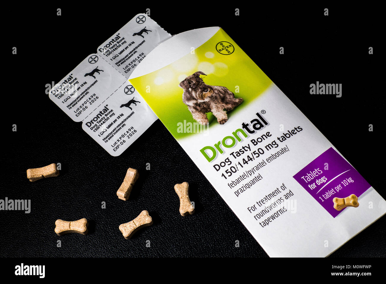 Drontal 'Dog Tasty Bone' tablets by Bayer. To treat the most common types of worms in dogs, including roundworms, - Stock Image