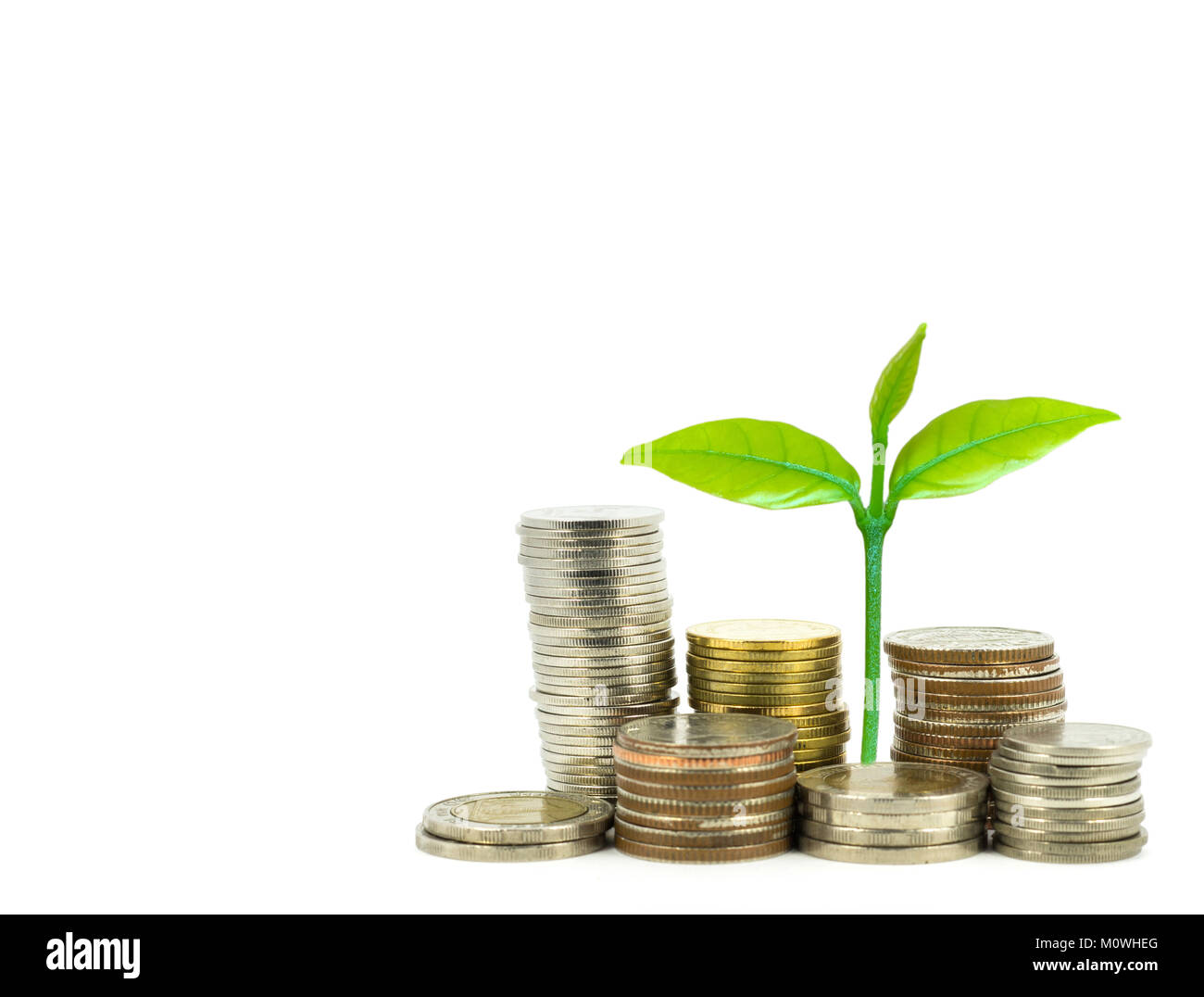 Green plant growing on money coins over white background, business and investment concept - Stock Image