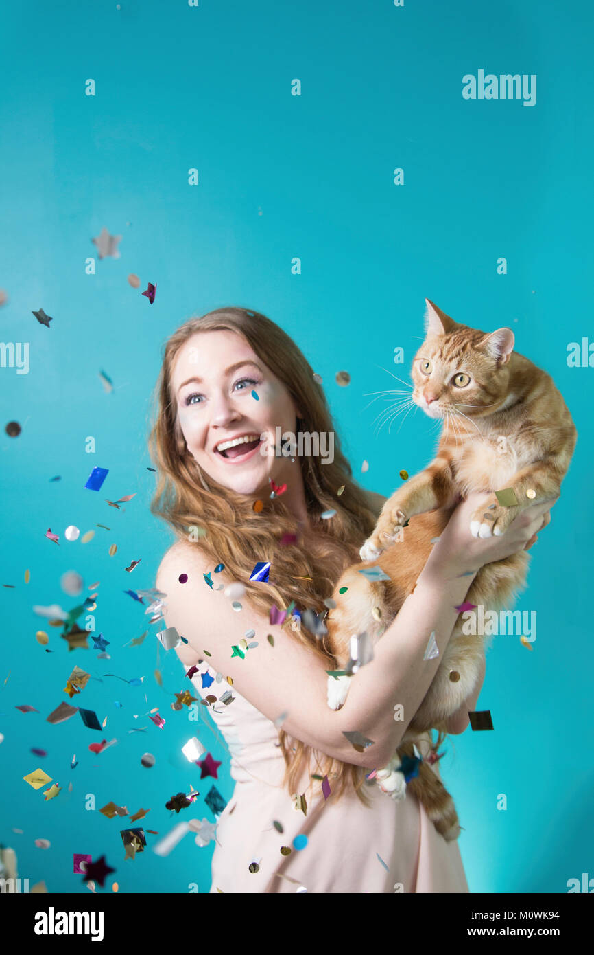 Surprise Party Cat - Stock Image