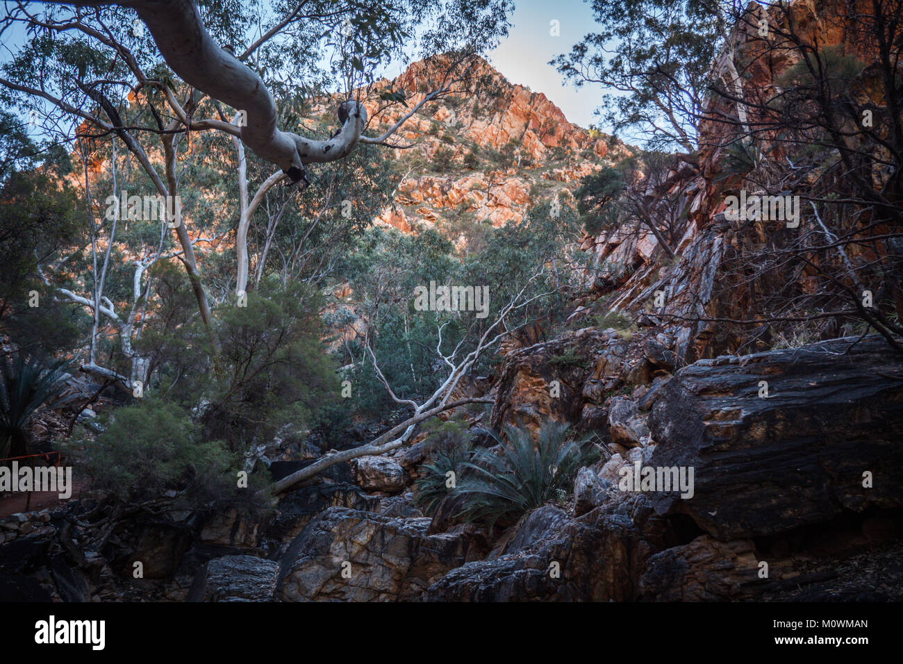 MacDonnell Ranges Stanley Chasm Northern Territory - Stock Image