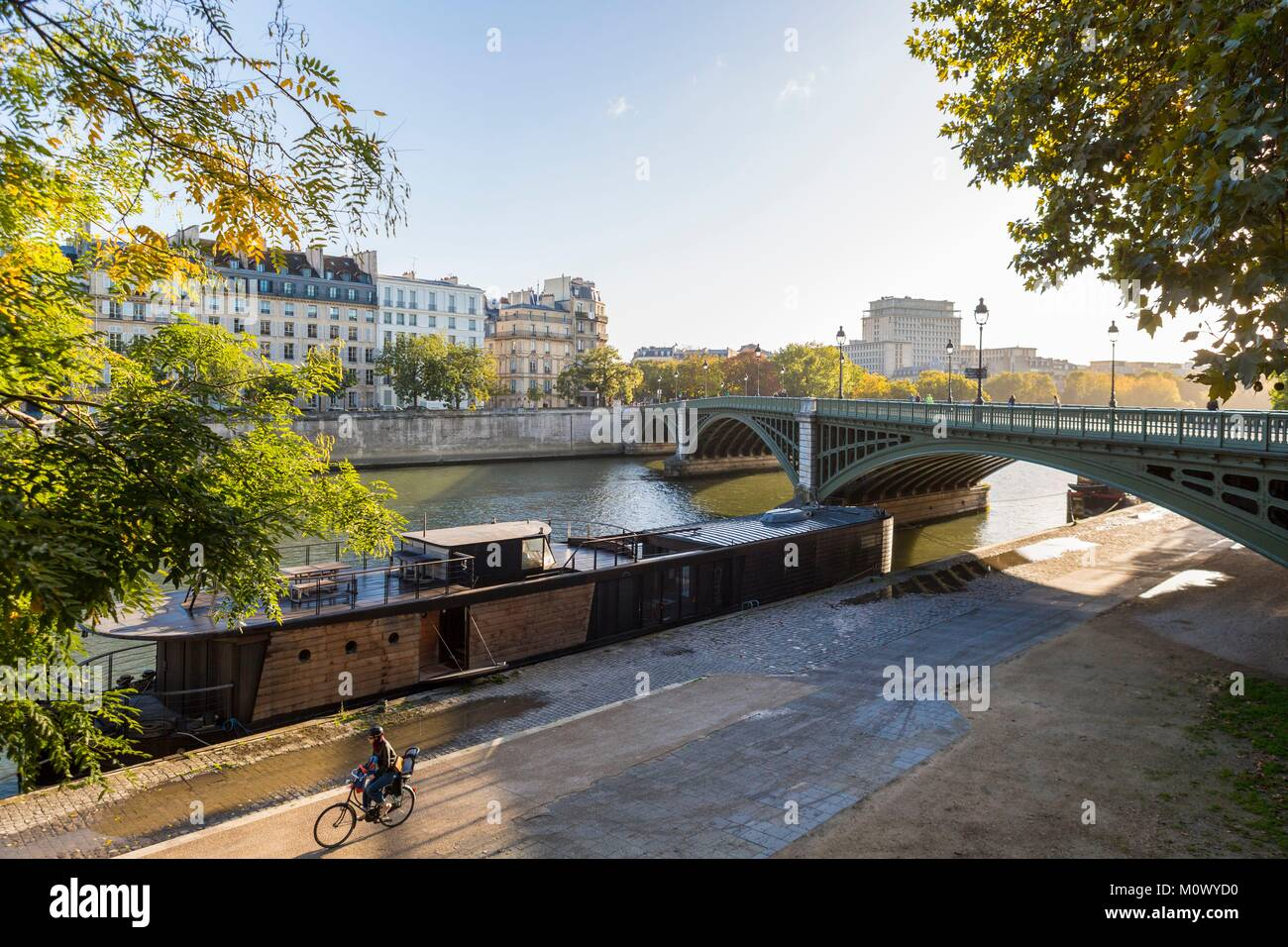 France,Paris,the Rive Gauche quays and the Sully bridge - Stock Image