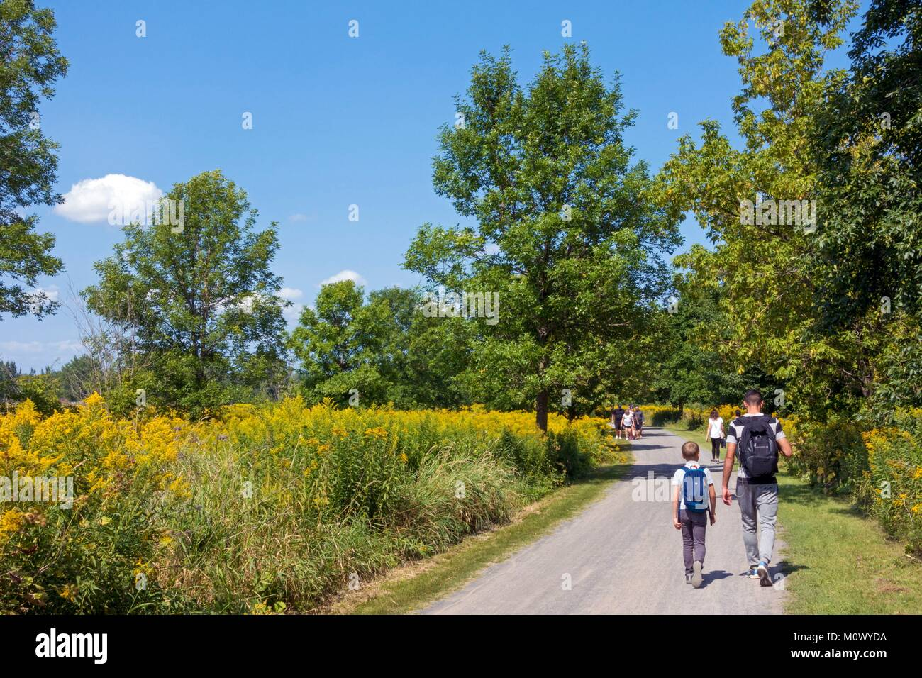 Canada,Quebec province,Montreal,Iles de Boucherville National Park a park on the St. Lawrence Islands famous for - Stock Image