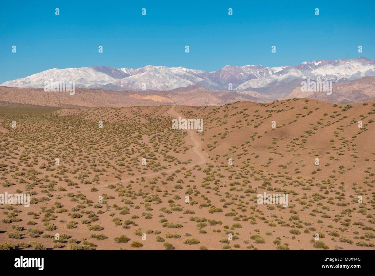 Argentina,San Juan province,Calingasta,Rio Calingasta valley - Stock Image