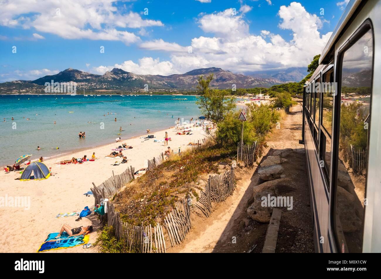 France,Haute Corse,Balagne,Calvi,the Trinighellu or little train in Corsica skirts Calvi beach - Stock Image