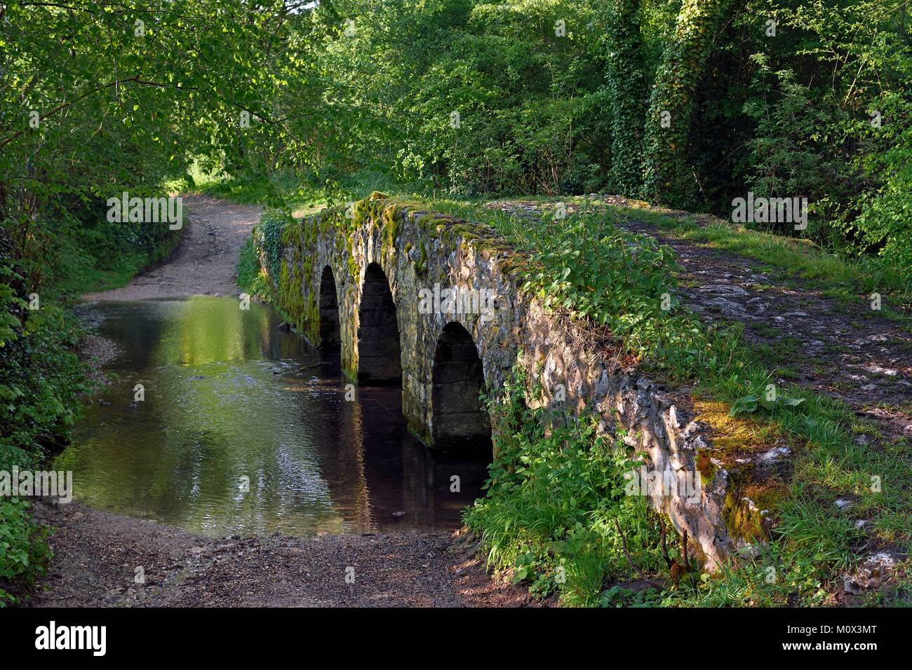 France,Yvelines,Montchauvet,Medieval Romanesque bridge called Pont de l'Arche built under Philippe Auguste - Stock Image