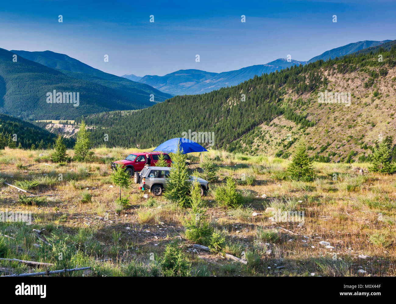 Campsite at Brewer Creek Forest Service Road, Purcell Mountains, near Invermere, British Columbia, Canada - Stock Image