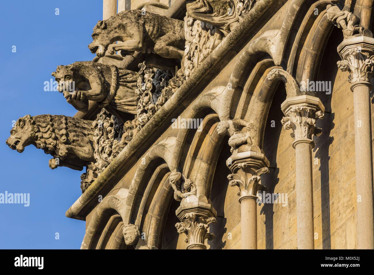 France,Cote d'Or,Cultural landscape of Burgundy climates listed as World Heritage by UNESCO,Dijon,Notre Dame Church,gargoyles Stock Photo