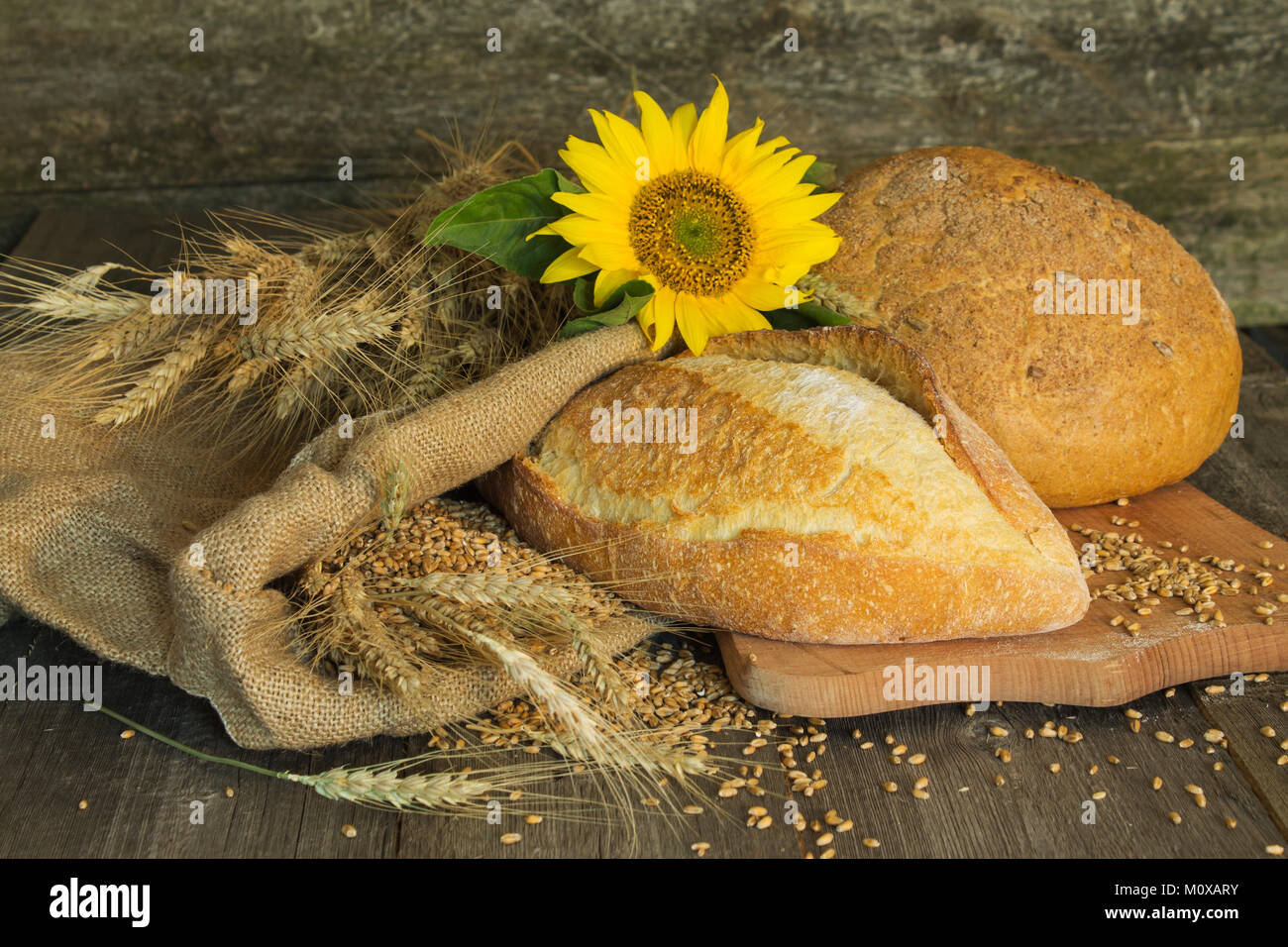 bread, wheat, ears of corn and flower sunflower on a wooden background on coarse fabric - Stock Image