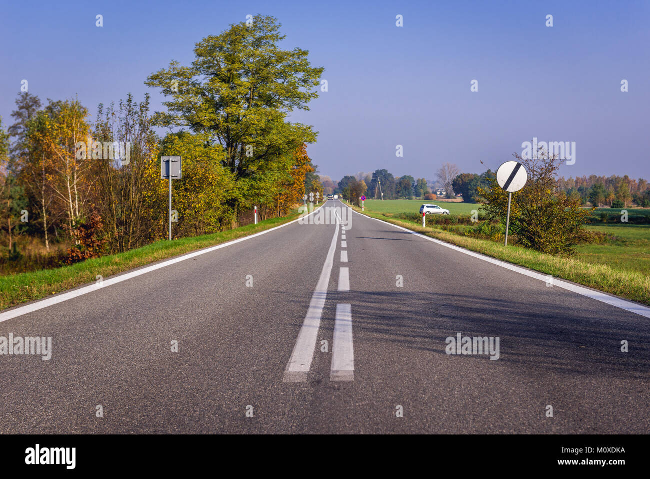Road near Sladow village in Sochaczew County, Masovia region in Poland - Stock Image