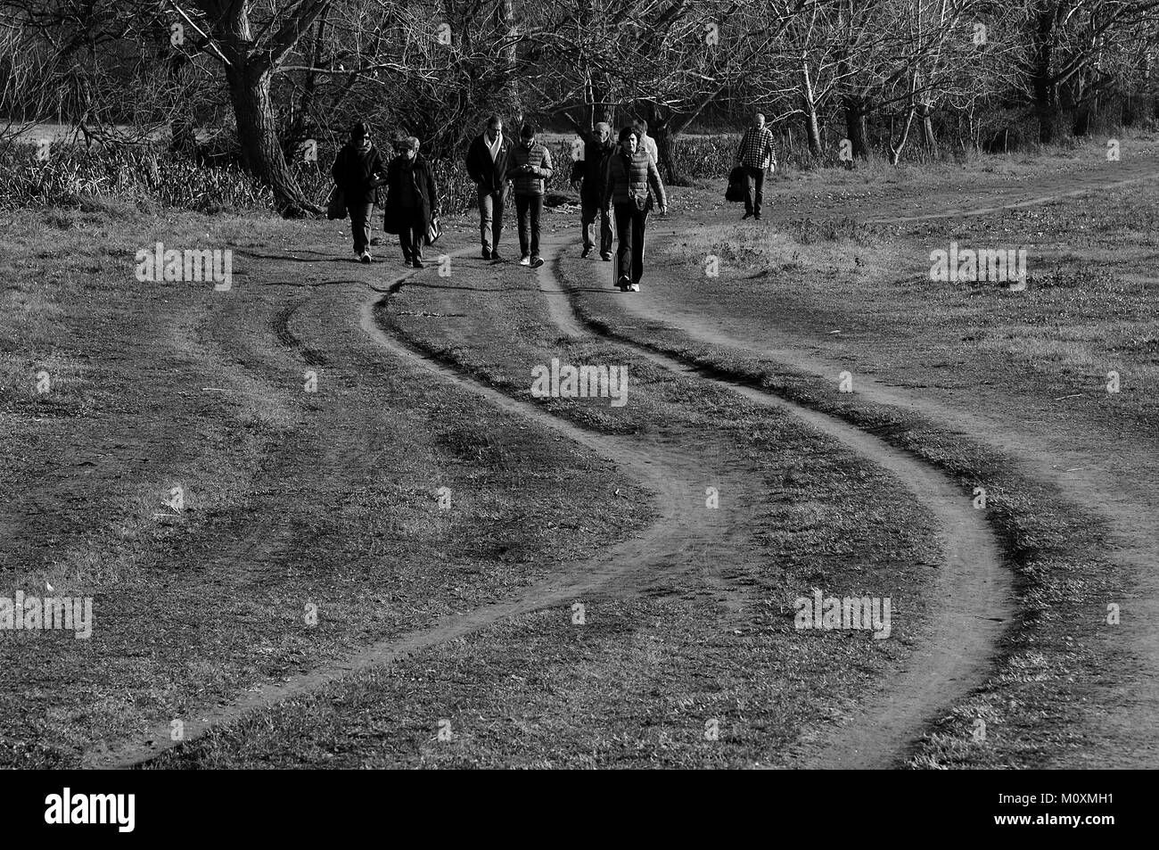 Dirt path with curved furrows with trees in the background and people walking - Stock Image