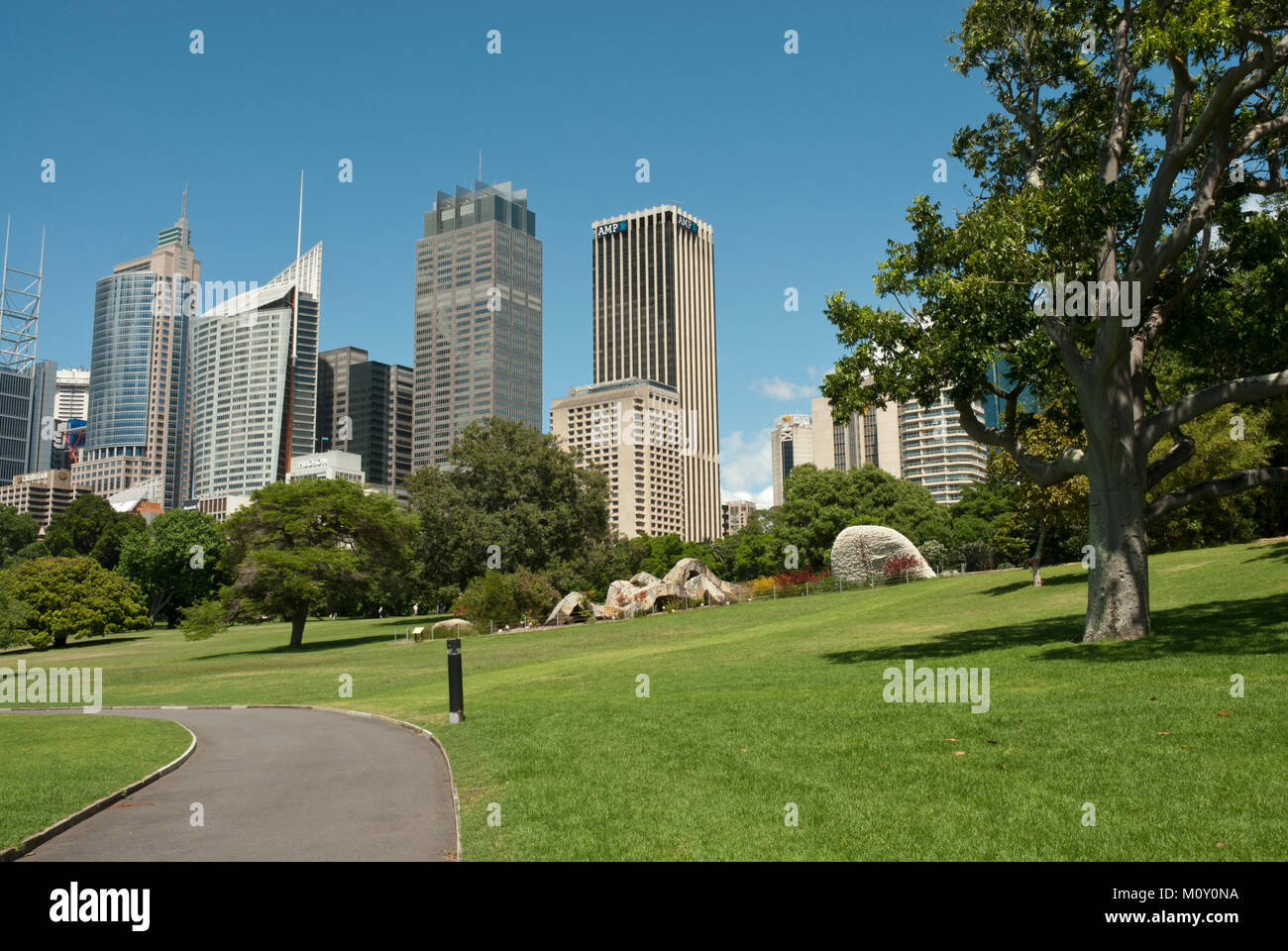 The Royal Botanic Garden, Sydney, sunny, blue sky with the high rise CBD (central business district) in the background - Stock Image