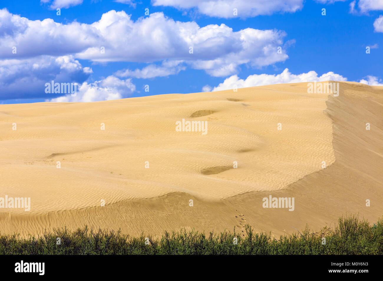 The Great Sandhills, near Sceptre, Saskatchewan, Canada - Stock Image