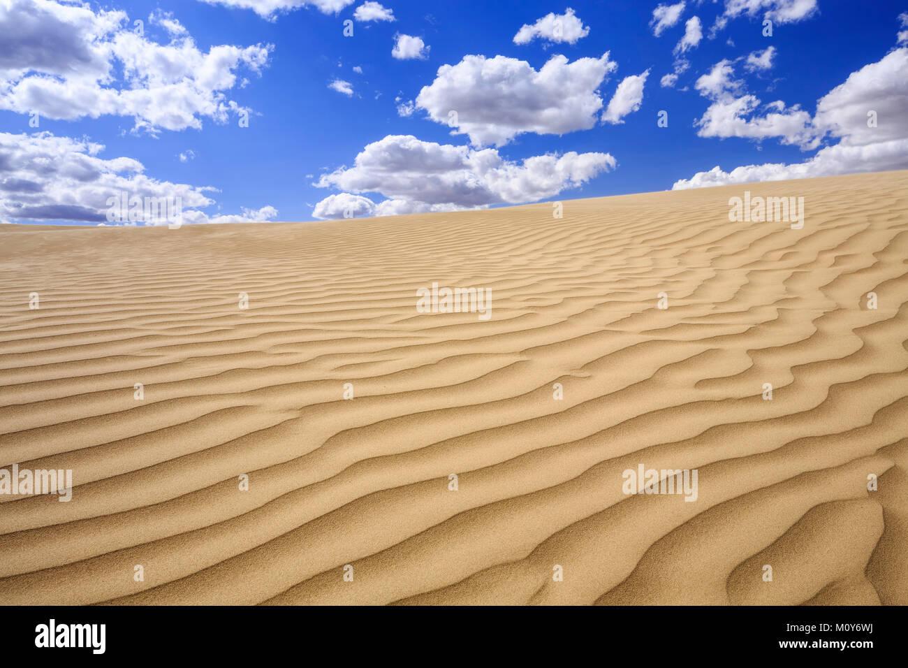 The Great Sandhills, near Sceptre, Saskatchewan, Canada. - Stock Image