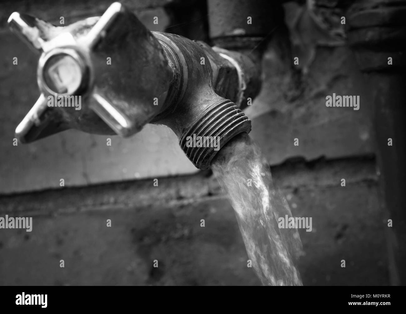 Faucet Garden Black and White Stock Photos & Images - Alamy