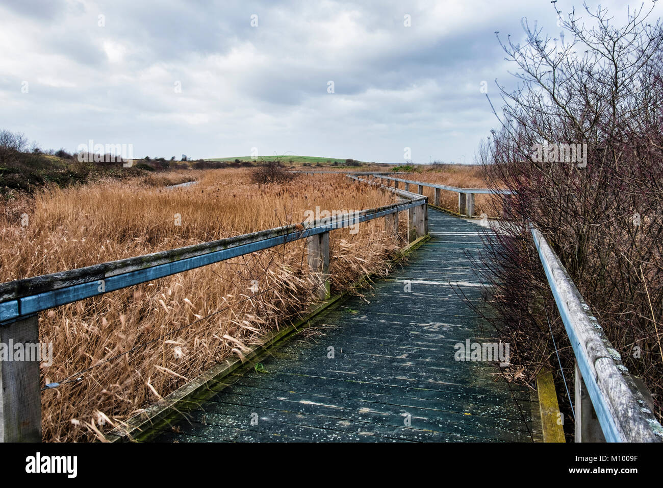 Essex,UK.Path in Rainham Marshes RSPB nature reserve next to Thames Estuary in Purfleet, Path through grass of  - Stock Image