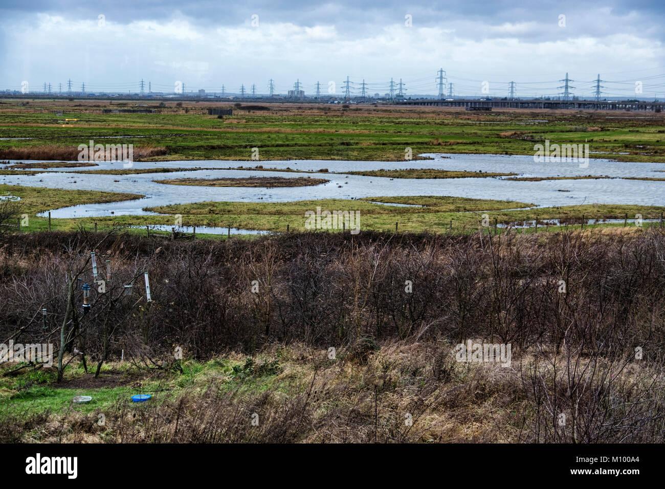 Rainham Marshes RSPB nature reserve next to Thames Estuary in Purfleet, The large wetland Bird sanctuary is a site Stock Photo
