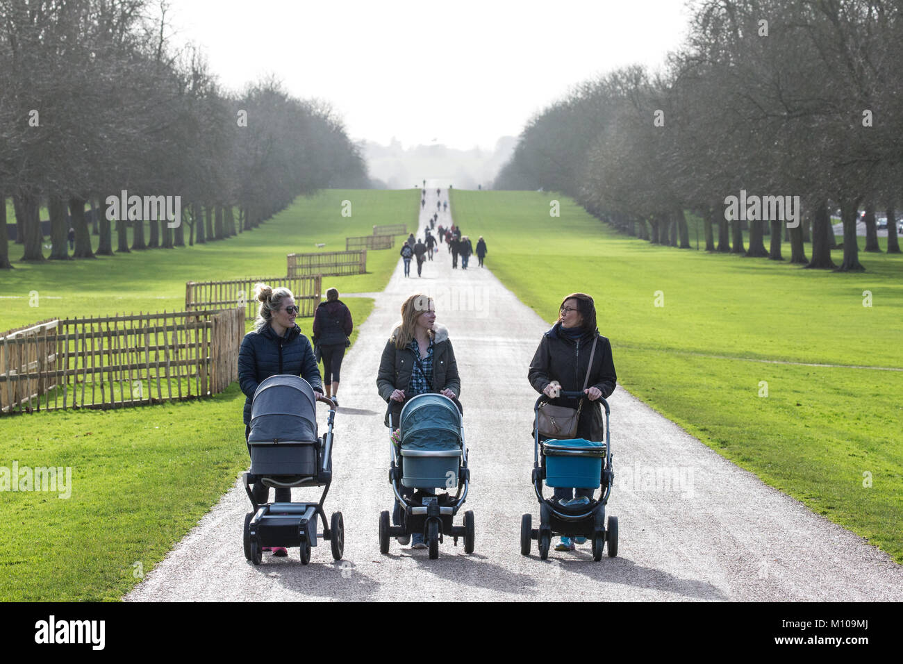 Windsor, UK. 25th January, 2018. Tourists and local residents enjoy the sunshine on the Long Walk in Windsor Great Stock Photo
