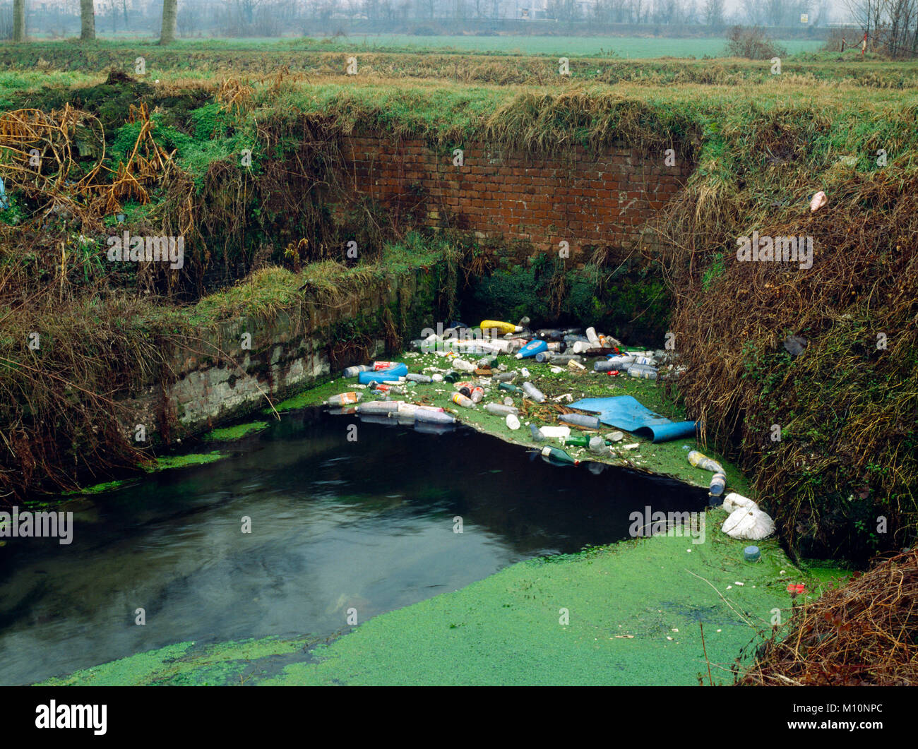 Italy, Lombardy, Provincie of Cremona, Water Pollution - Stock Image