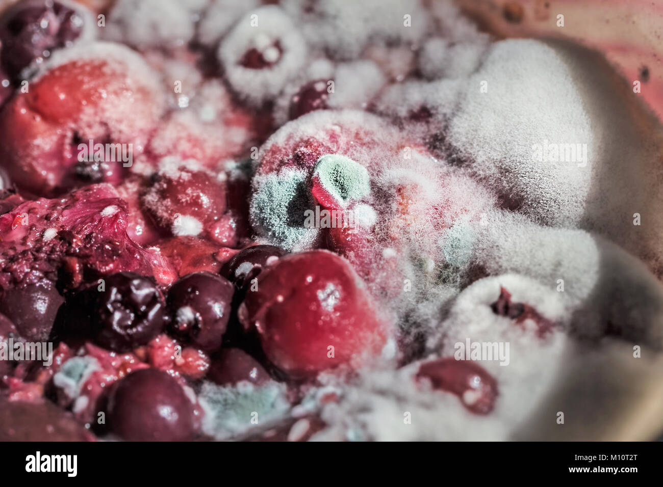 Multi colors berries in mold as symbol of time Stock Photo
