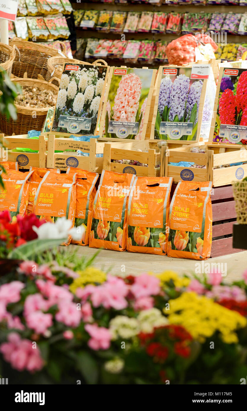 Packets of flower bulbs on sale in a garden centre uk stock photo packets of flower bulbs on sale in a garden centre uk mightylinksfo