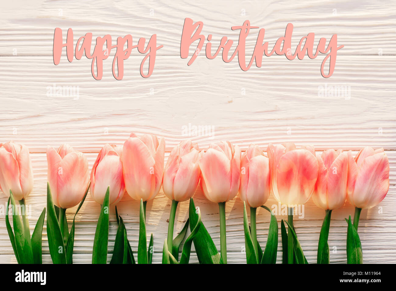 Happy Birthday Text Sign On Pink Tulips White Rustic Wooden Background Flat Lay Spring Top View Of Flowers In Soft Morning Light With Space For Te