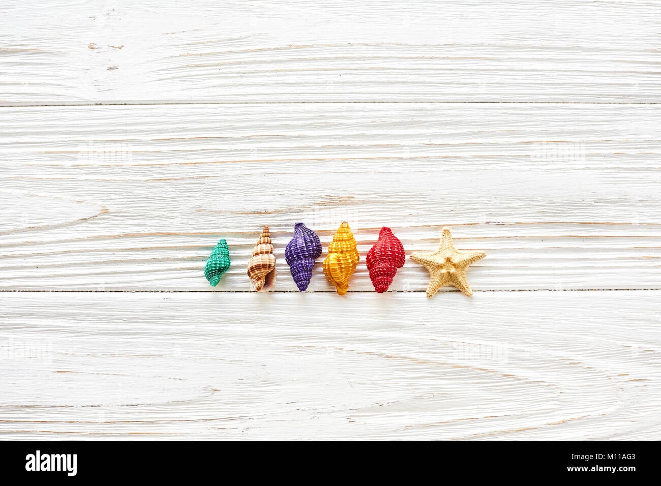summer travel vacation concept, space for text, flat lay. colorful shells and starfish on white wooden background - Stock Image