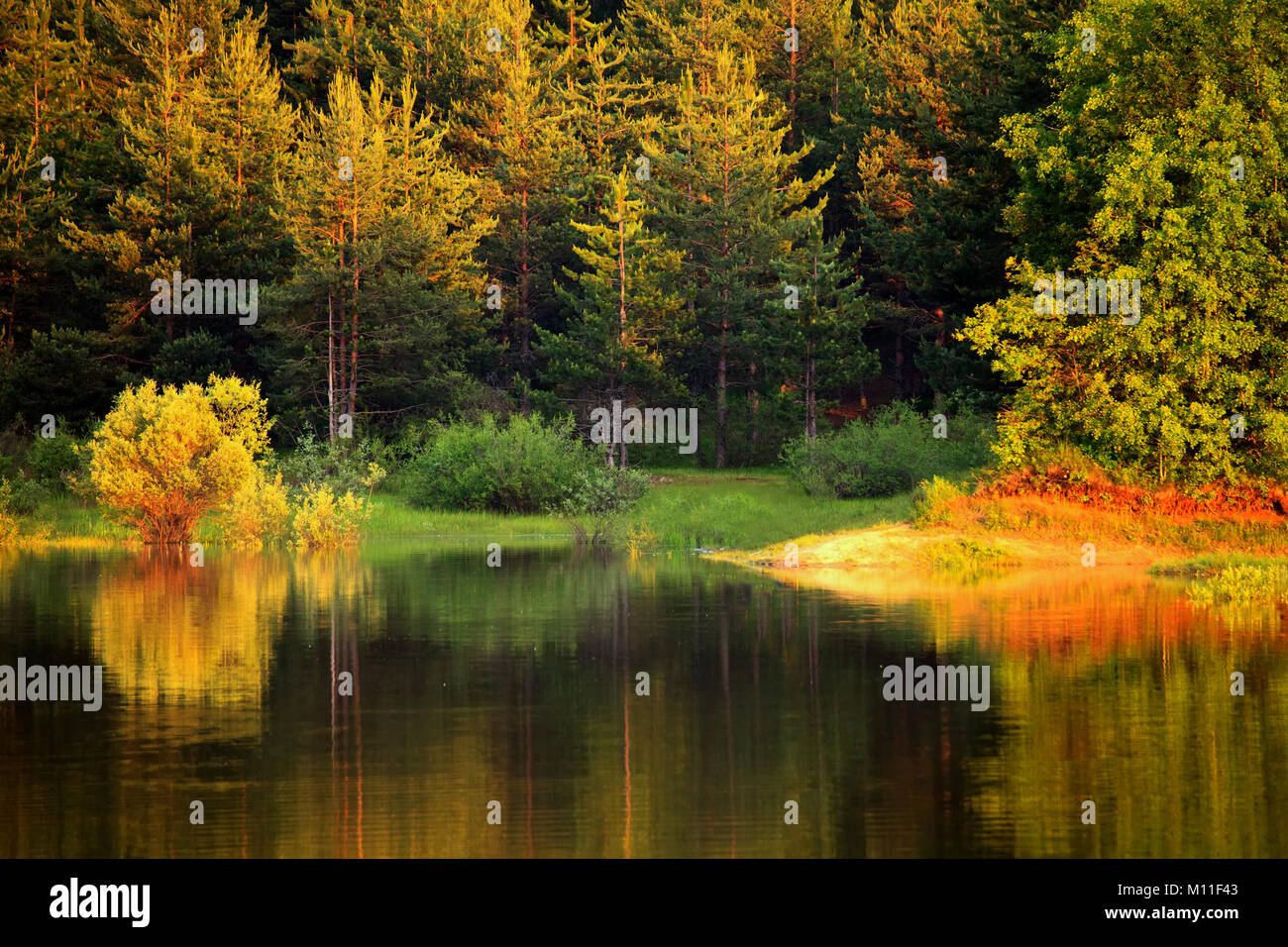 autumn colorful lake in bulgarian forest - Stock Image