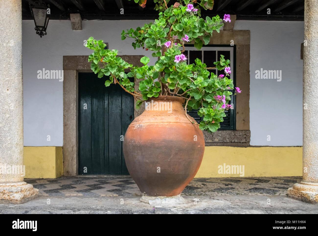 Large Terracotta Pot Stock Photos & Large Terracotta Pot
