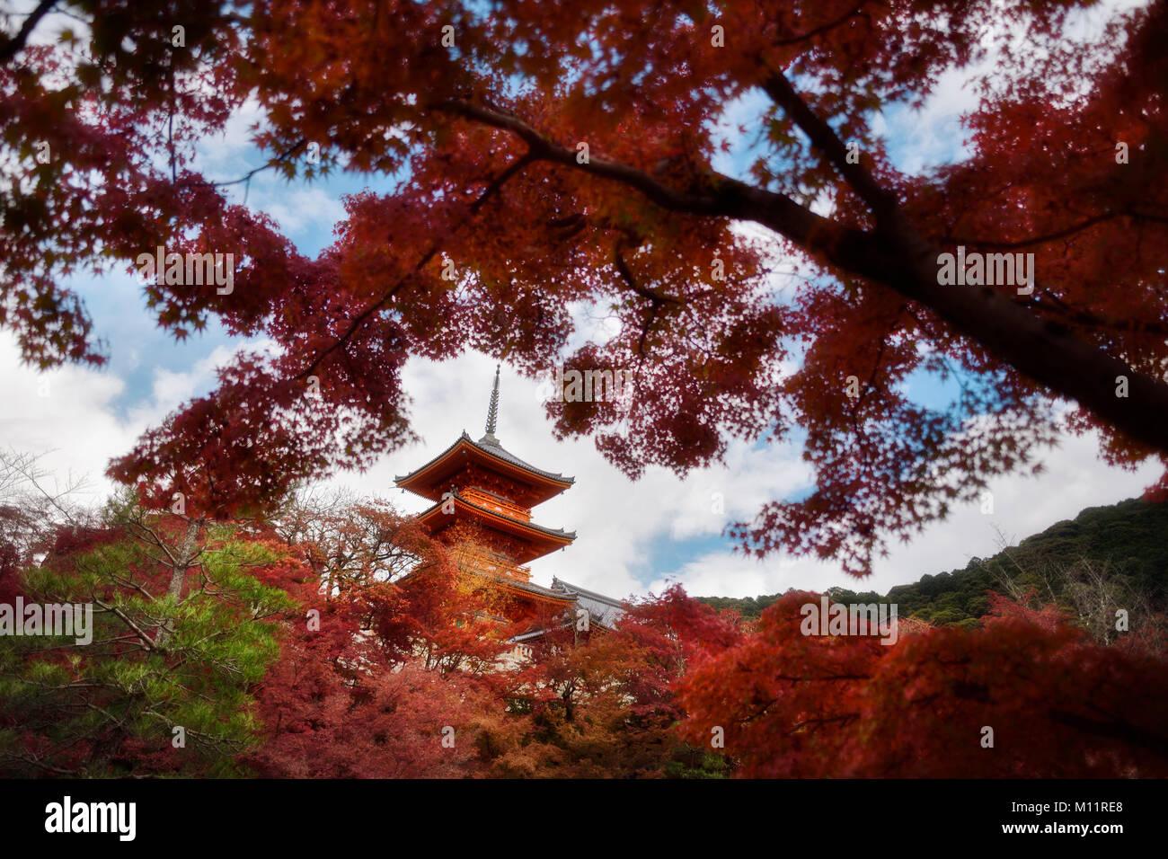 Beautiful autumn scenery with red Japanese maples and Sanjunoto pagoda of Kiyomizu-dera Buddhist temple in Higashiyama, Stock Photo