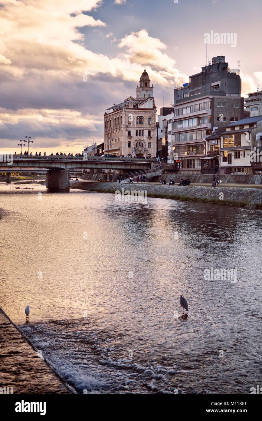 Shijo bridge over Kamo-gawa, Kamo River, with two herons standing in it. Kyoto city artistic sunset scenery, Japan Stock Photo
