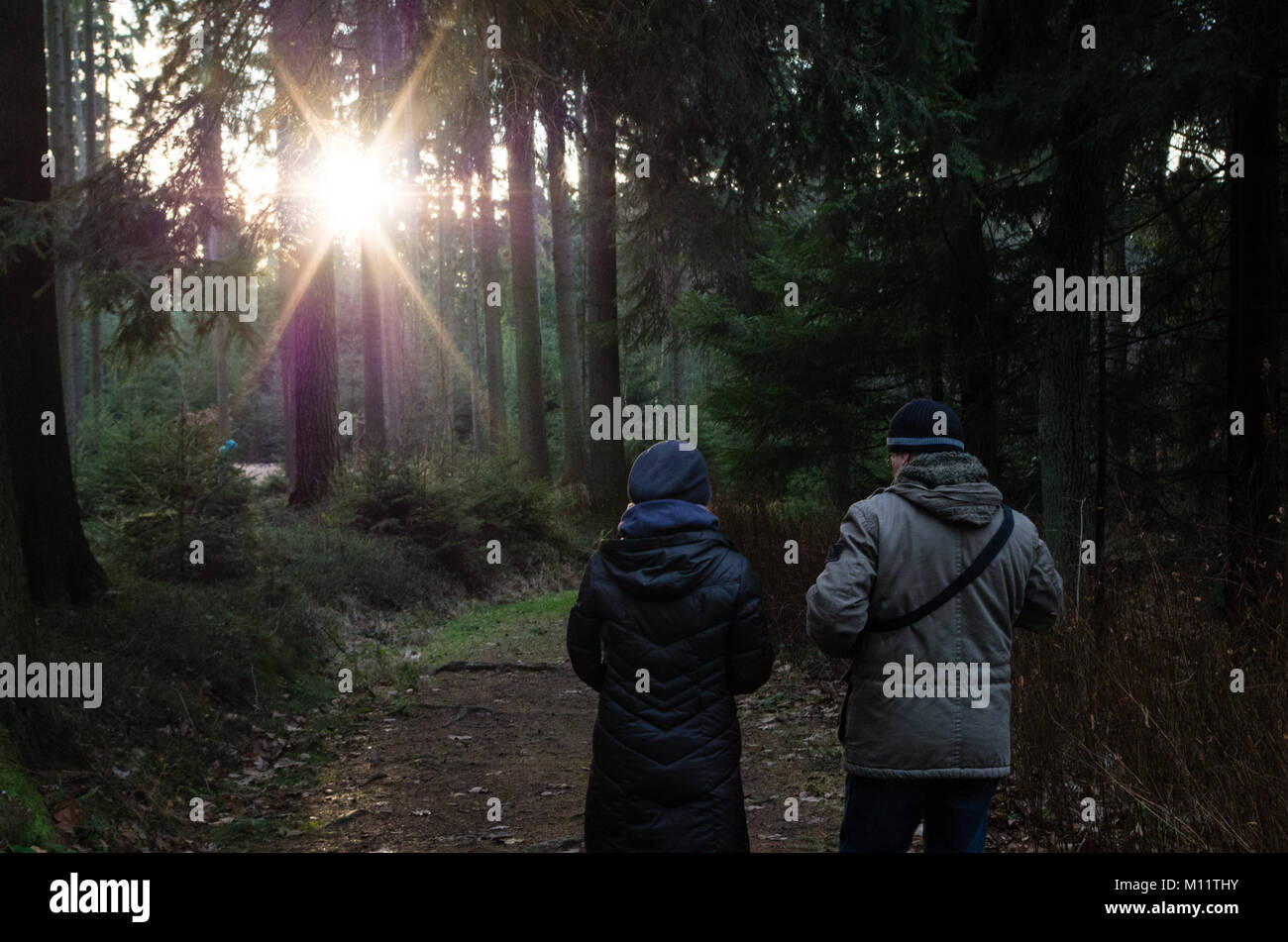 Couple walking in the forest and talking to each other - Stock Image