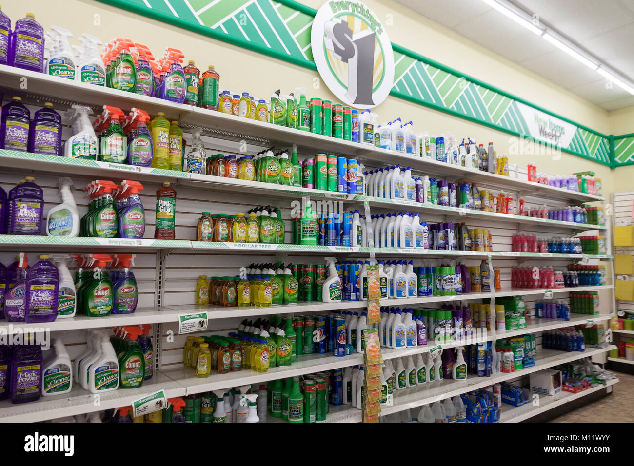 Cleaning products for sale on shelves in a dollar tree - Cheap interior detailing near me ...