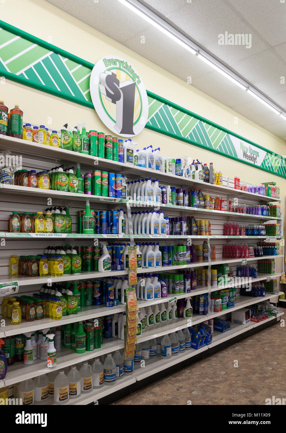 Cleaning products for sale on shelves in a Dollar Tree store