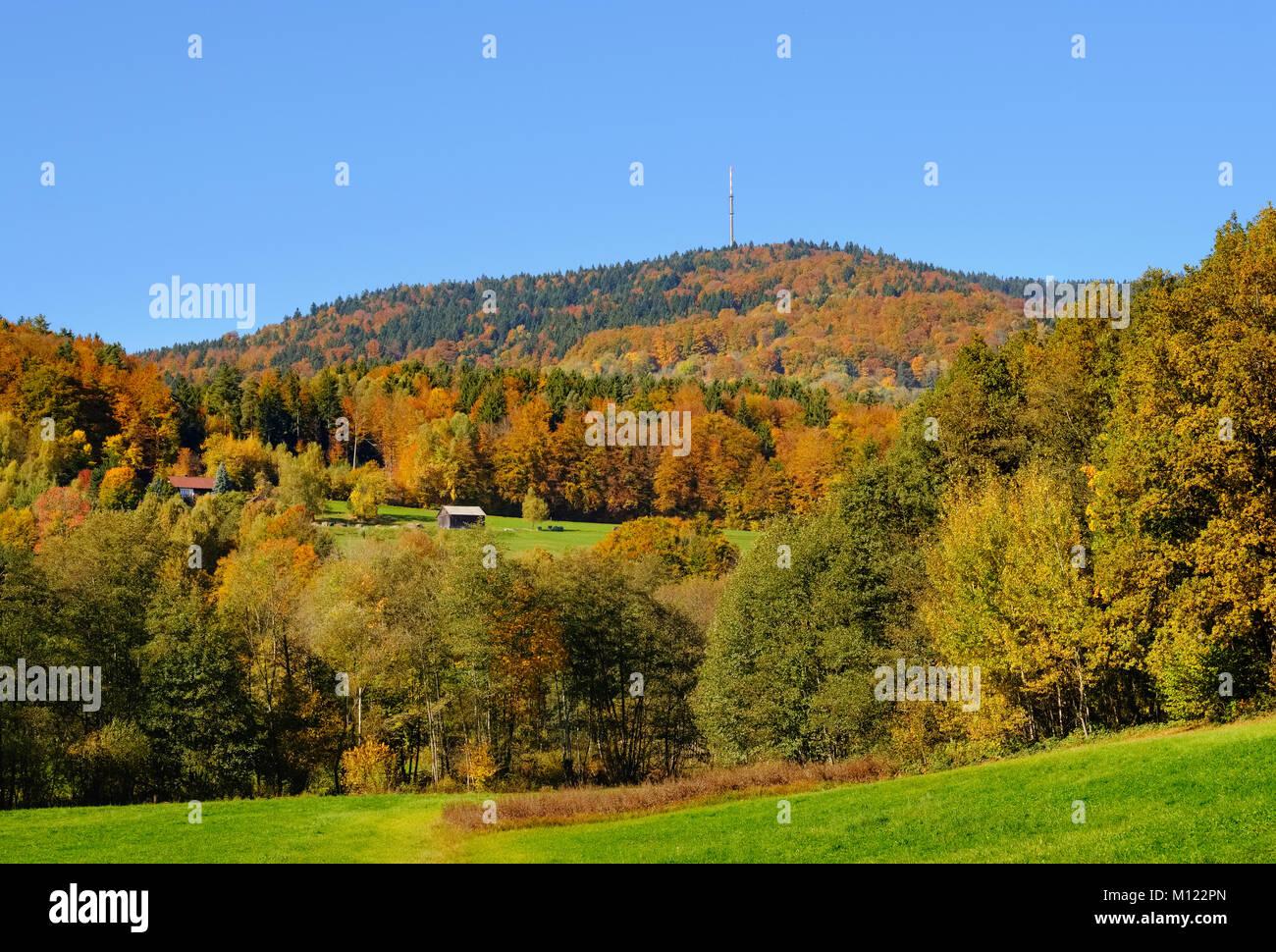 Mount Brotjacklriegel,Bavarian Forest,Lower Bavaria,Bavaria,Germany - Stock Image