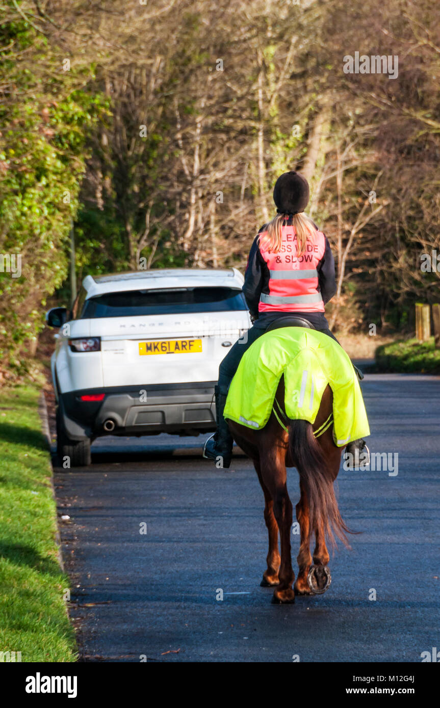 Horse-rider on a country road with horse and rider in fluorescent hi vis clothing.. - Stock Image