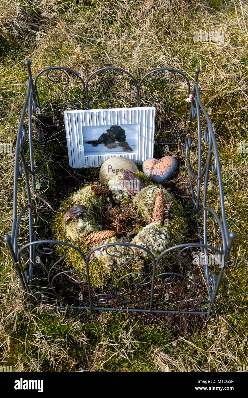 The East Frisian North Sea island Norderney, Germany, animal cemetery in the dunes, Stock Photo