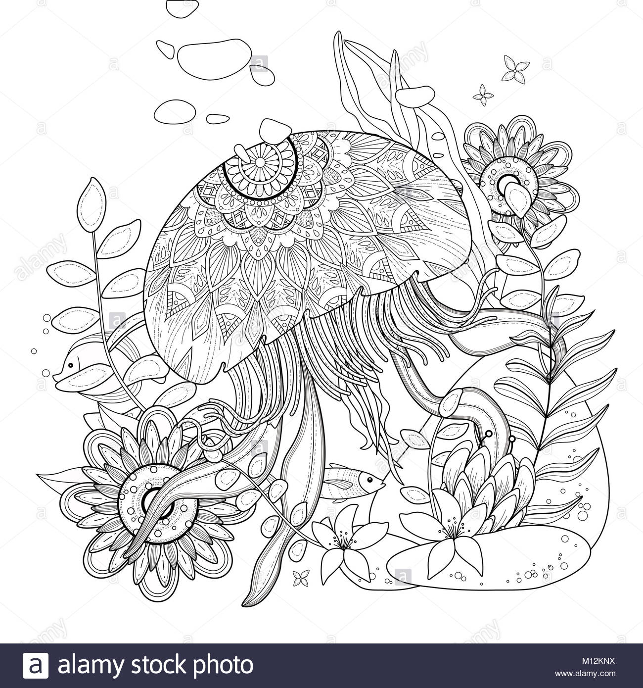 Jellyfish Floating In The Ocean For Coloration