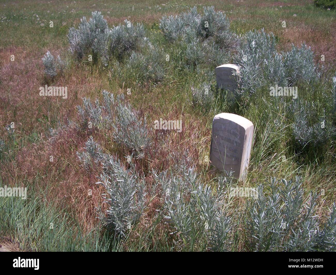 Stone markers for fallen at the Battle of the Little Big Horn in southern Montana. Stock Photo
