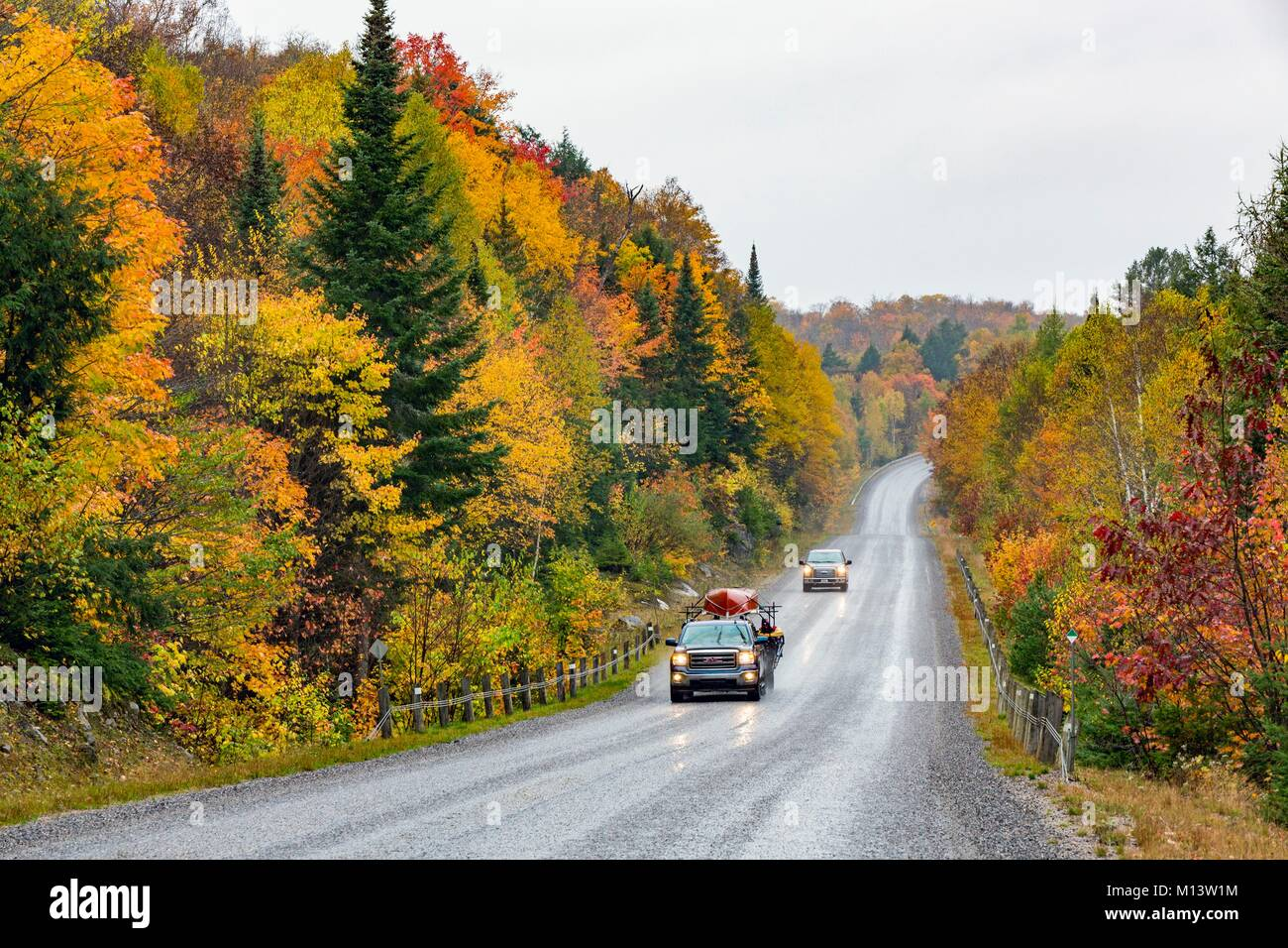 Canada, Province of Ontario, Mattawa to Témiscamingue Road, Alexander Lake Forest Provincial Park - Stock Image