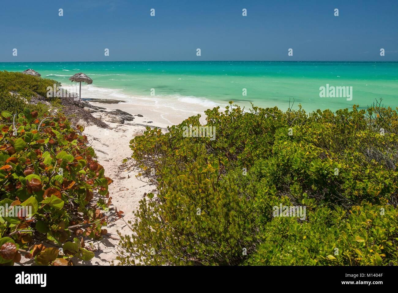 Cuba, Villa Clara province, Jardines del Rey, Cayo Santa Maria Stock Photo
