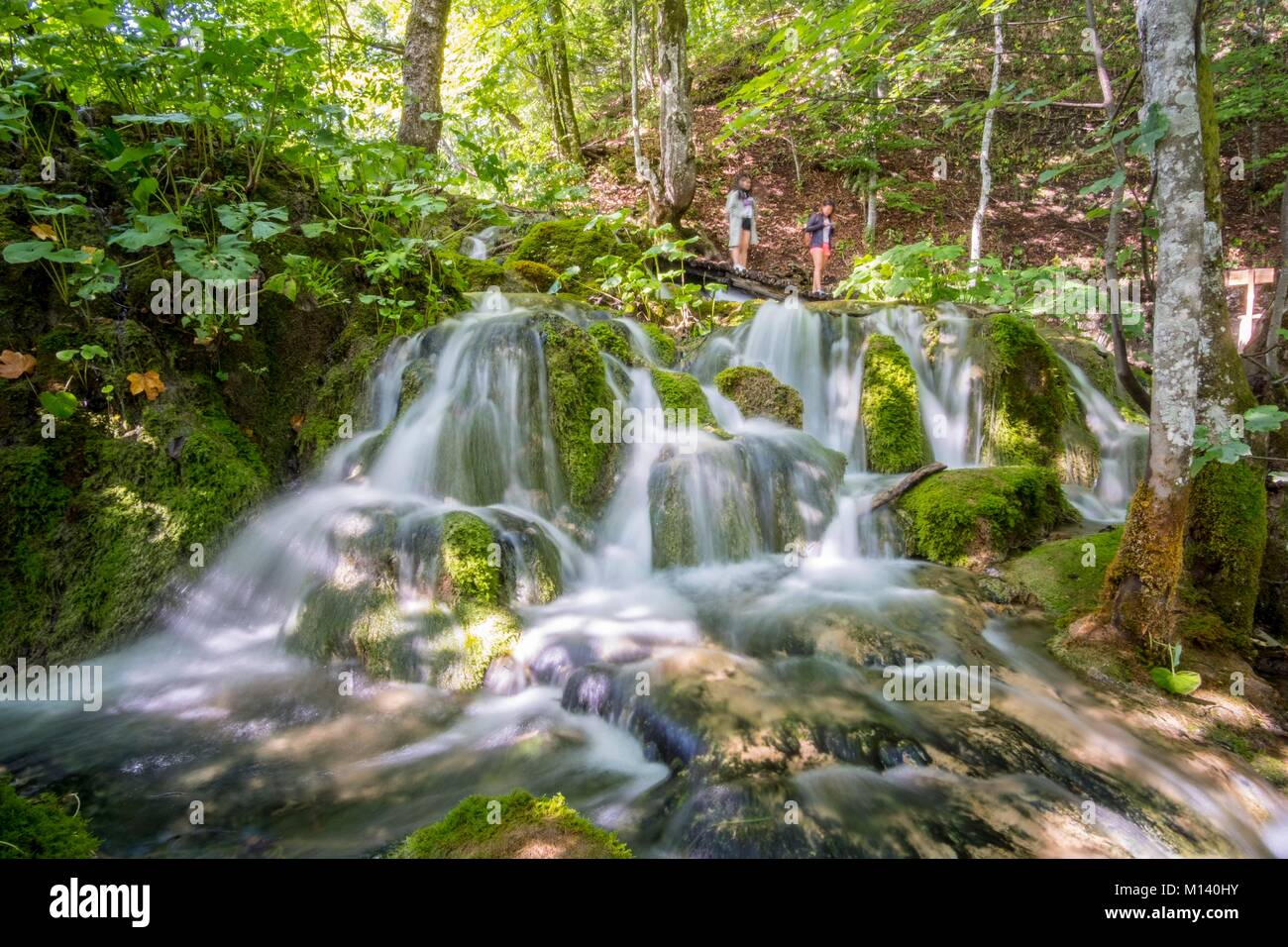 Croatia, North Dalmatia, Plitvice Lakes National Park listed as World Heritage by UNESCO, walking trail at the level - Stock Image