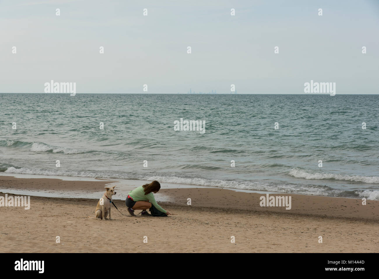 A young woman and her dog get organized on the South side of Lake Michigan, at the Indiana Dunes State Park and - Stock Image
