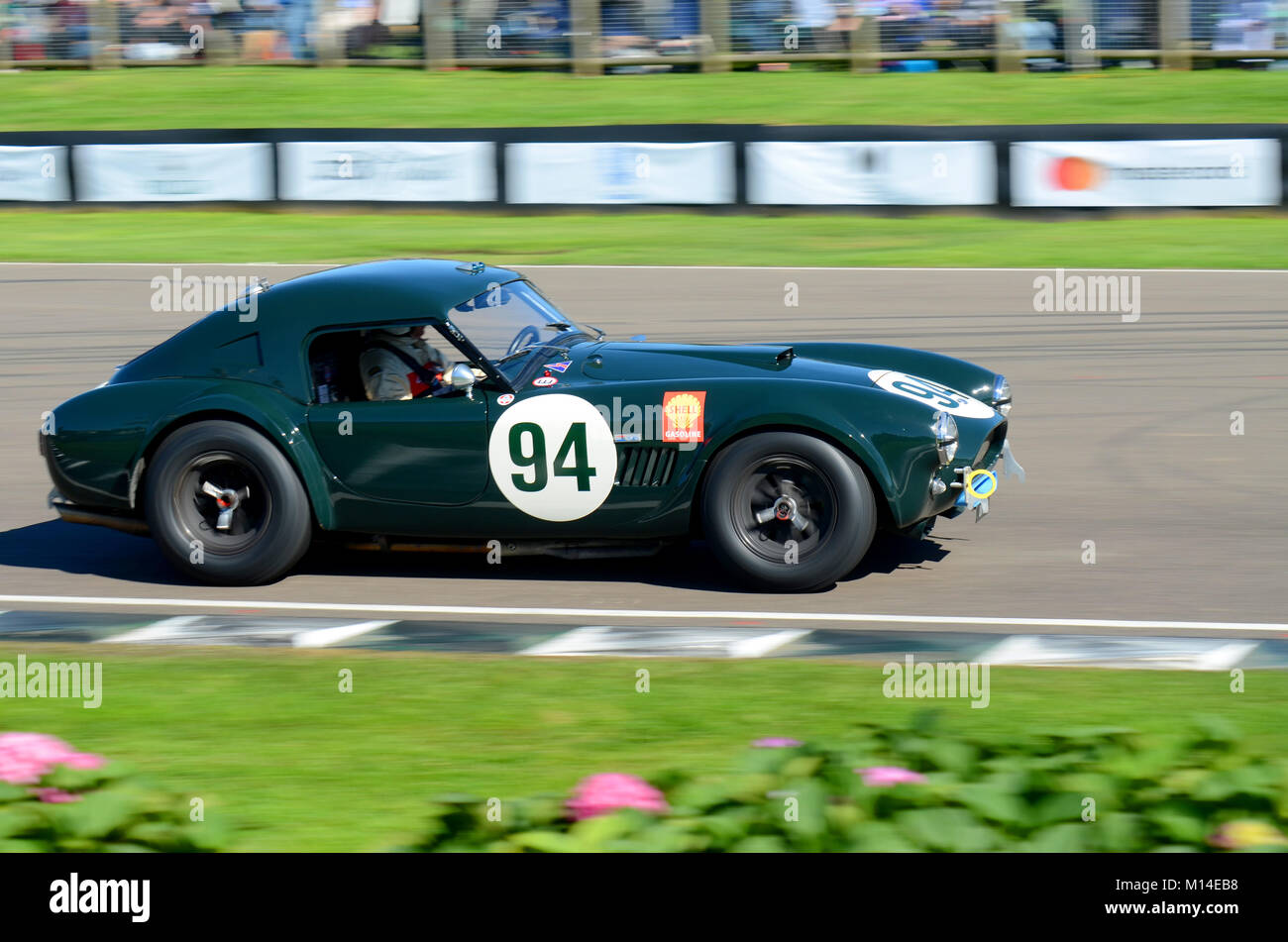1962 AC Cobra owned by Jason Wright racing in the RAC TT Celebration at the Goodwood Revival - Stock Image