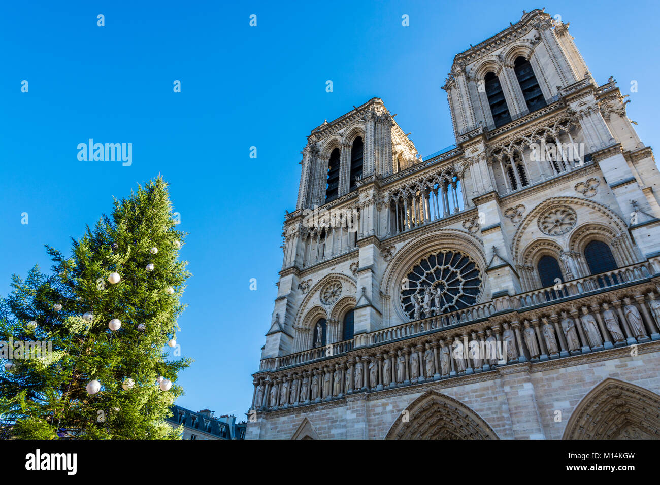 Paris, France: Medieval cathedral Notre Dame de Paris and the decorated Christmas tree in front. - Stock Image