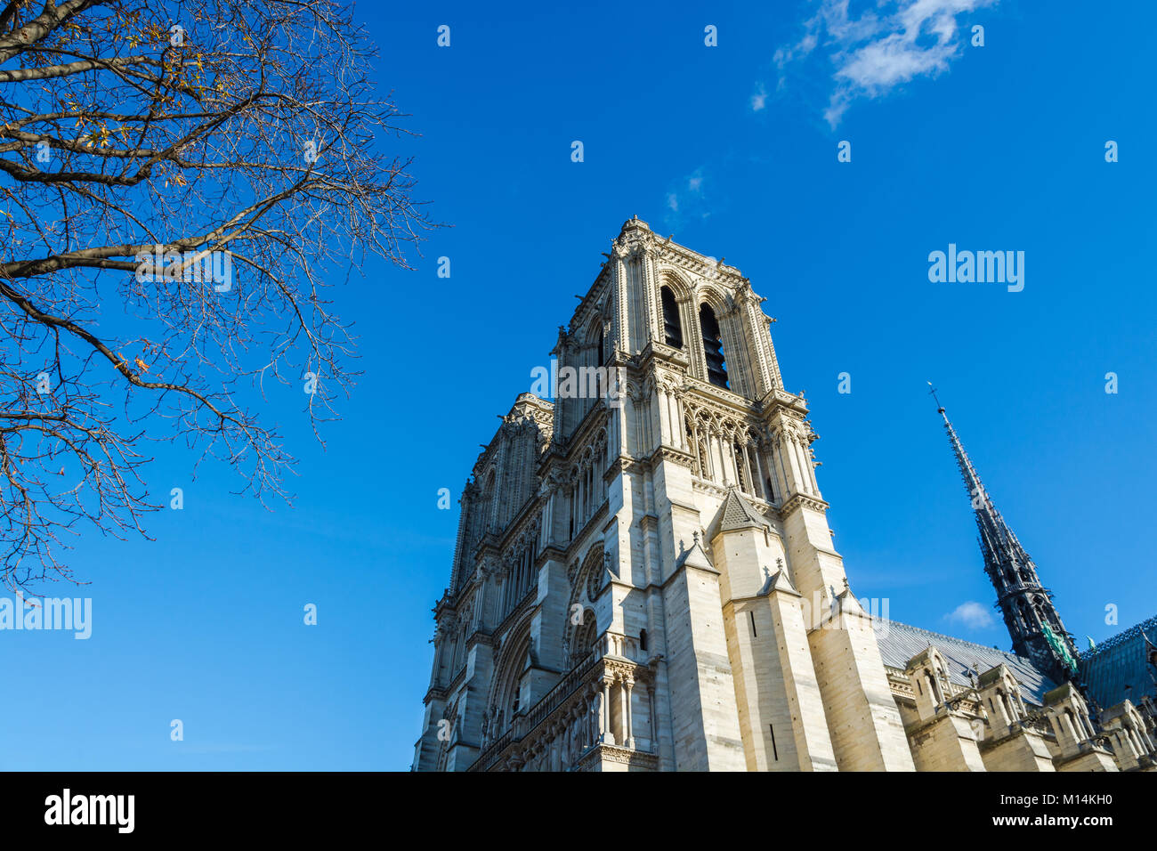 Paris, France: Medieval cathedral Notre Dame de Paris viewd beyound empty tree branches in winter times. - Stock Image