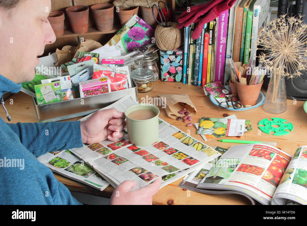 Male gardener prepares to order seeds from gardening  catalogues in winter (January), in preparation for the new Stock Photo