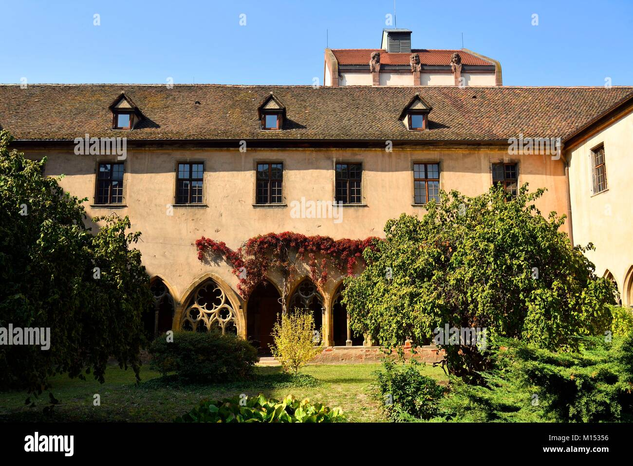 France, Haut Rhin, Alsace Wine Route, Colmar, Unterlinden Museum, the cloister Stock Photo