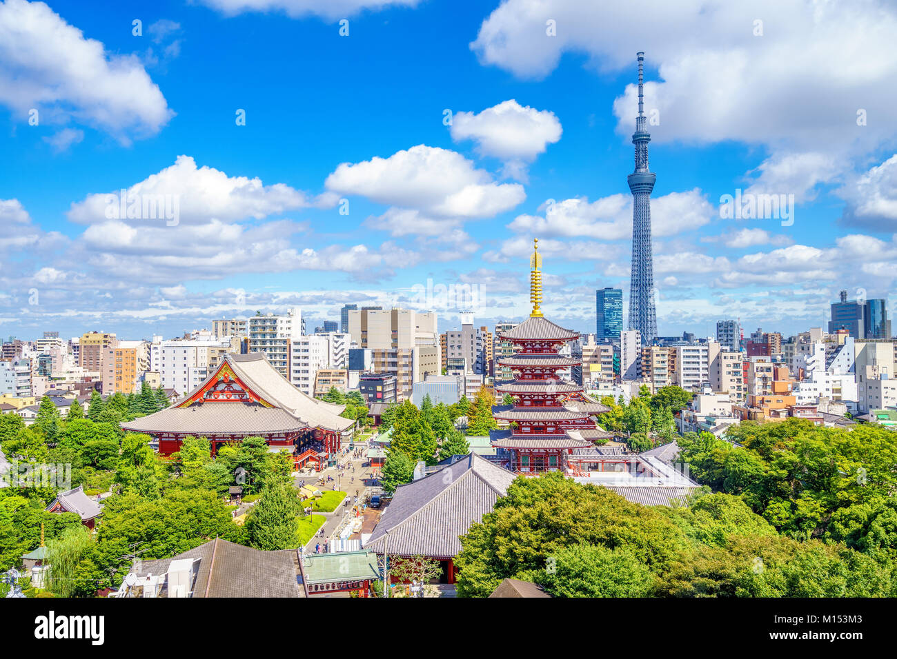 Aerial view of tokyo city with senso temple - Stock Image