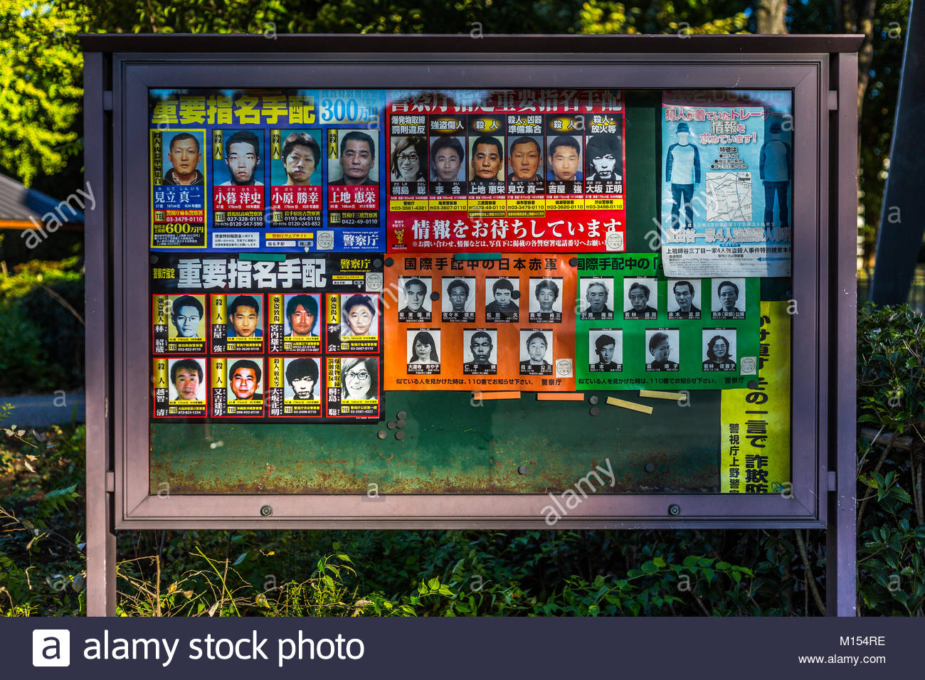 Board with criminals - Stock Image